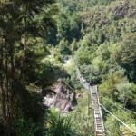 Buller Gorge Swinging Bridge 2