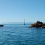Mare di Tasman