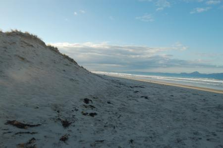 Waipu Cove 4